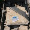 Sandstein Mint Bodenplatten, Oberfläche spaltrau, getrommelt 20/20/2,5 cm